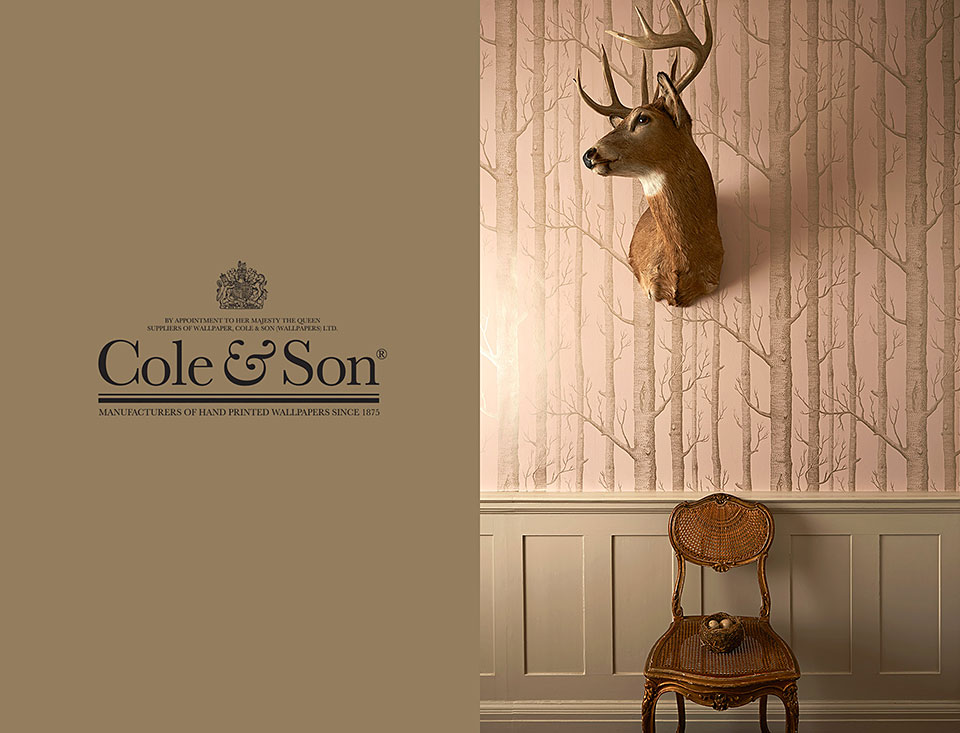 Cole & Son Wallpaper_Photography by Patrick Steel