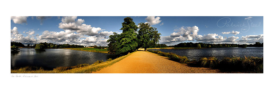 Landscape photo of Pen Pends walk way, richmond park by Patrick Steel
