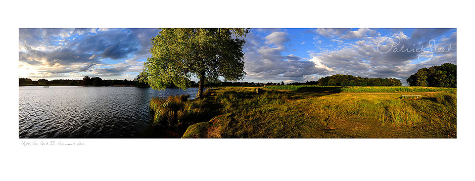 Landscape photo by patrick steel, richmond park
