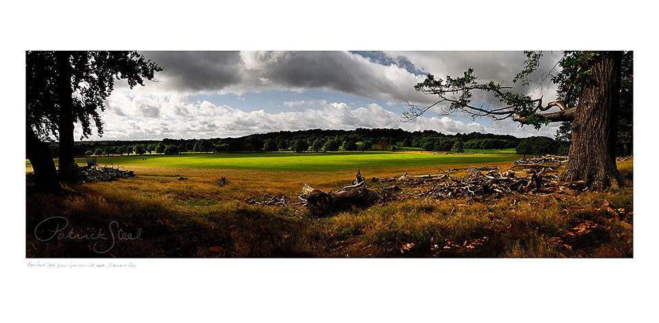 richmond_park_photograph_8_blog